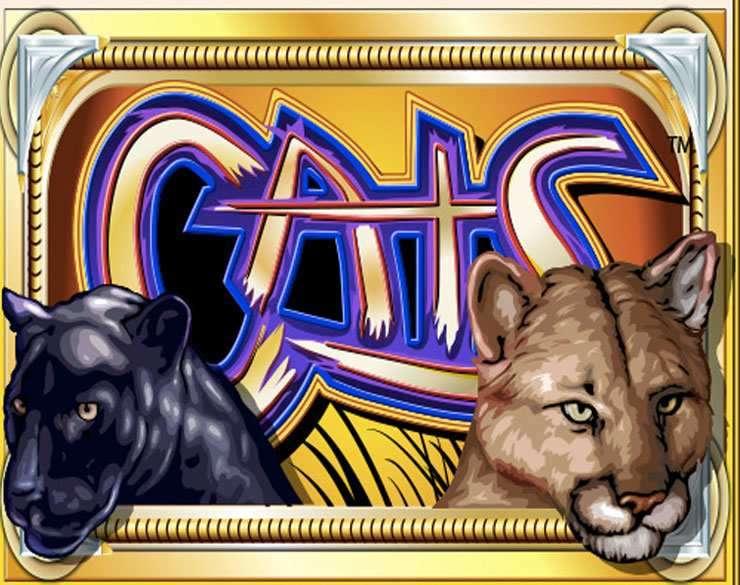 รีวิวสล็อต Cats